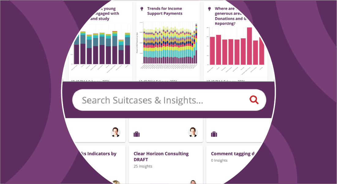 How to search Suitcases and Insights on Seer