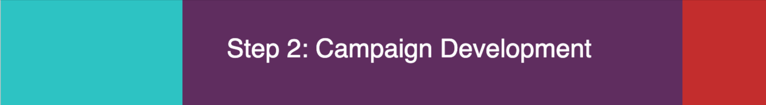 Step 2 - Campaign Development